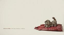 מס׳ 085-084 - פריצי על כרית, 2010