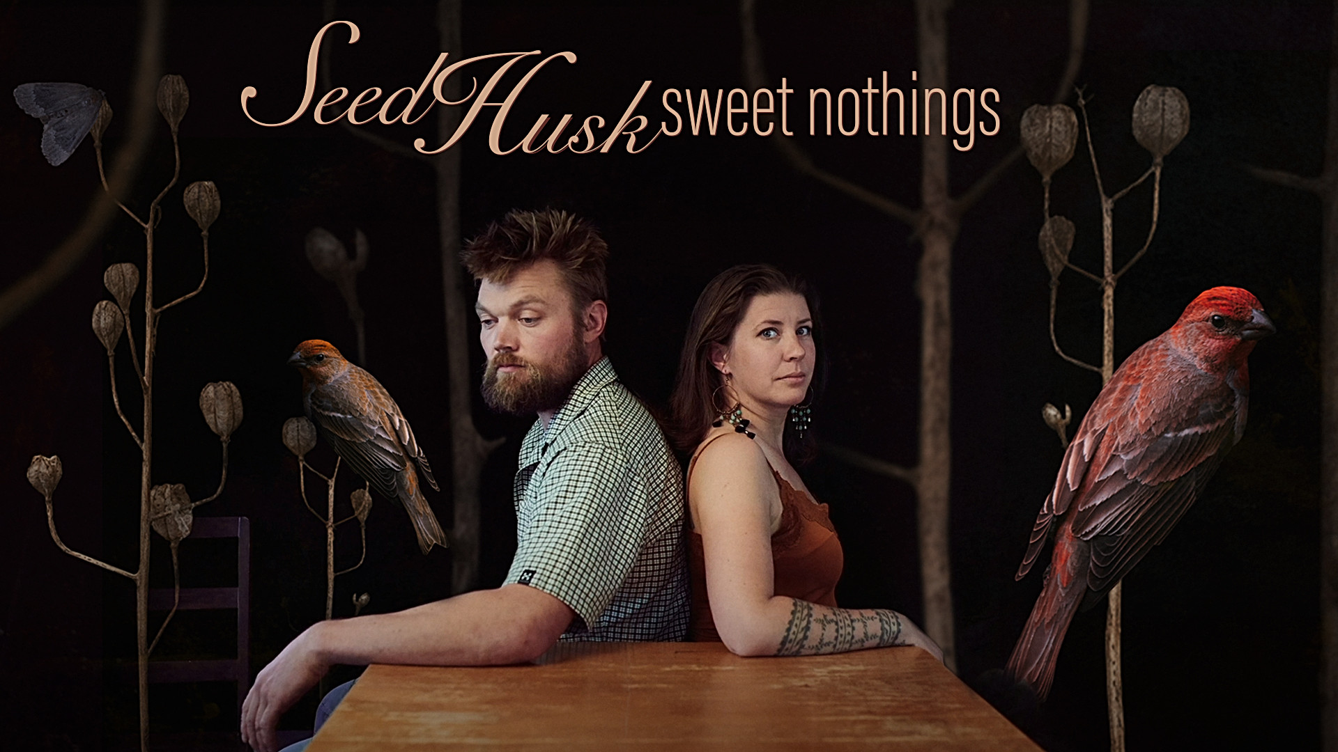 Promo picture Seed Husk
