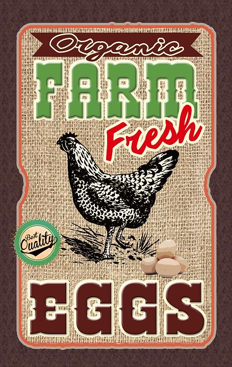 Farm Fresh Eggs - RB-FC-03