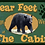 """Thumbnail: """"BEAR"""" Feet Welcome at the Cabin."""