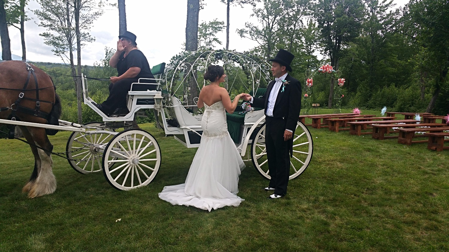 Gorgeous Horse & Buggy Wedding