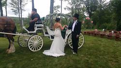 Gorgeous Horse & Buggy Wedding
