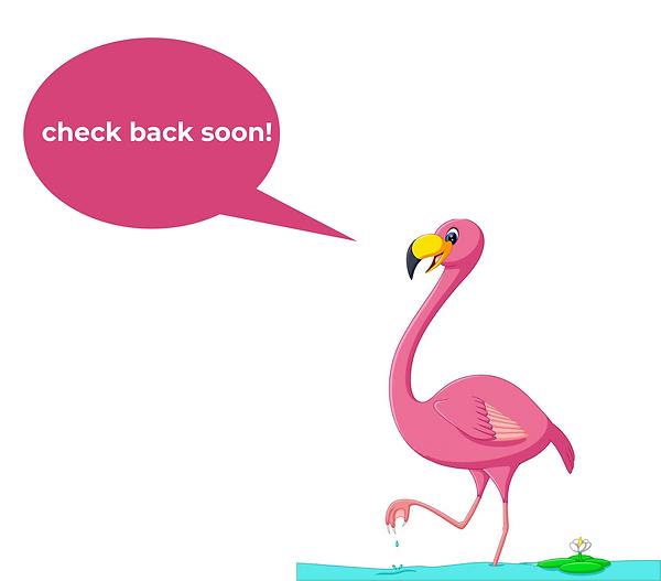 flamingo-check-back-soon.png