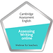 assessing-writing-online.png