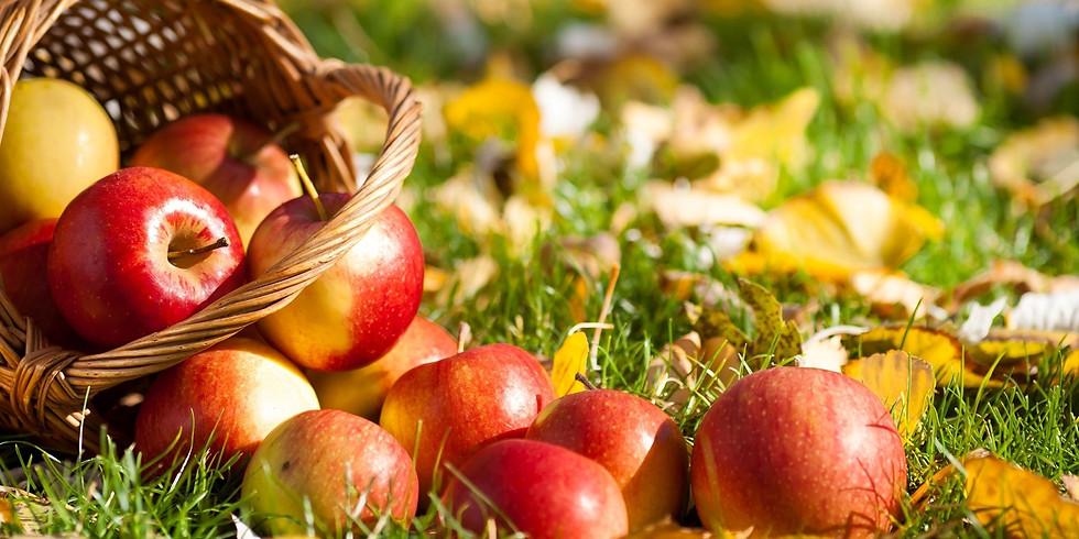 Apple of my Eye - Fall Celebration (Waterdown)