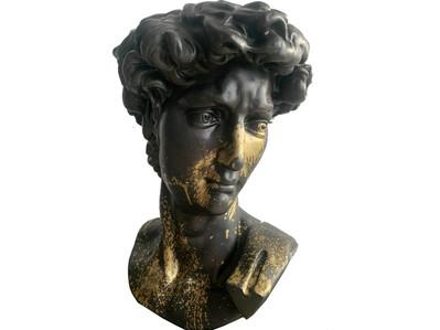 Escultura David I