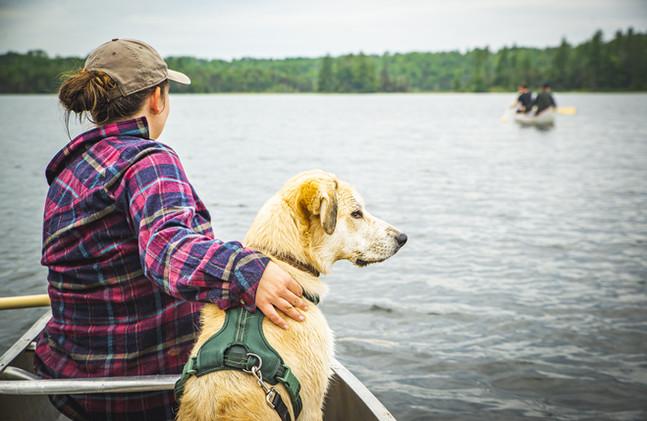 Canoe Use Included, Dog-Friendly