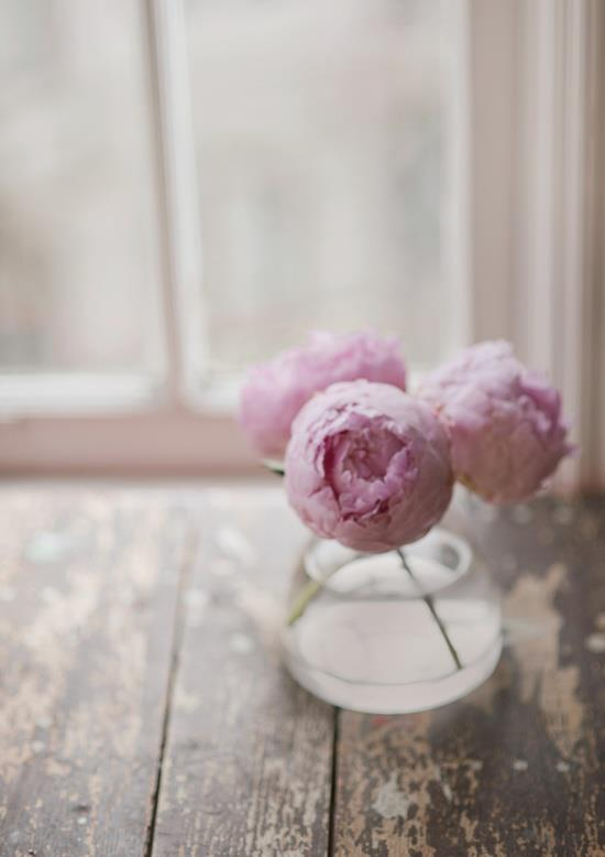 pretty+pink.jpg