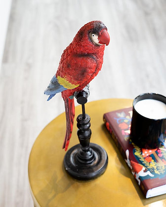 Creative Active Minds Ruby Resin Macaw