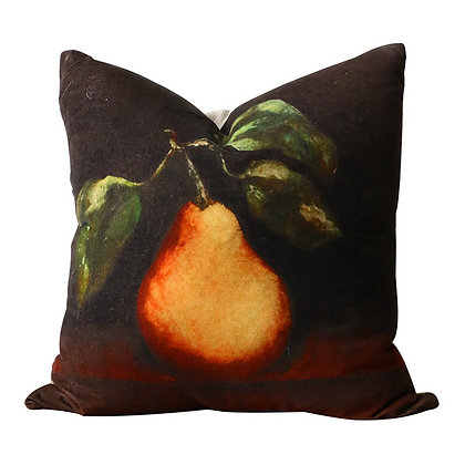 Raphael Velvet & Linen Cushion cover and insert