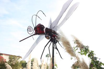 angel-iron-man-dragonfly-img_9103jpg
