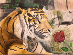 (Adult) Oil Painting