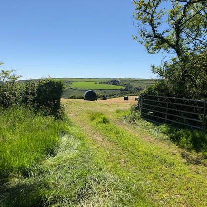 Entrance to fields at Trecadwgan Farm