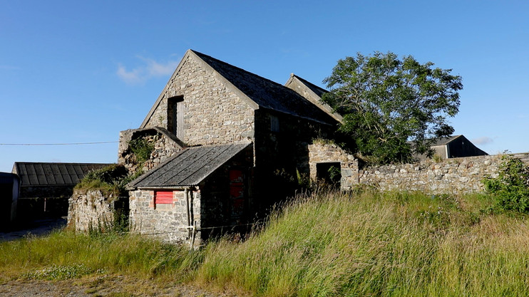 One of the many beautiful stone wall buildings at Trecadwgan Farm