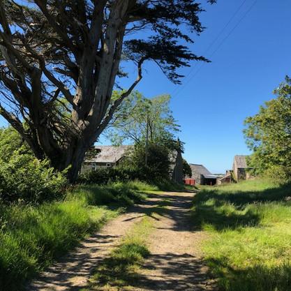 Public Footpath from Solva to Trecadwgan Farm