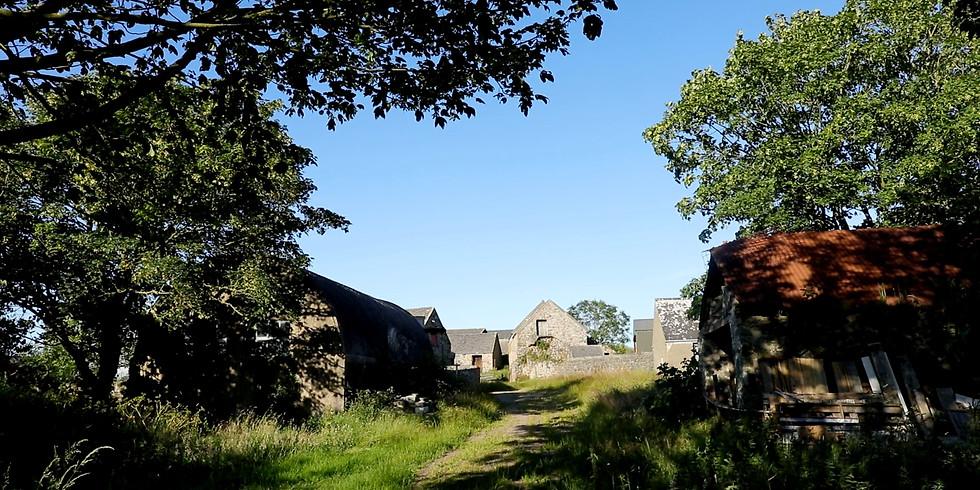 Walk to Trecadwgan Farm from Lower Solva