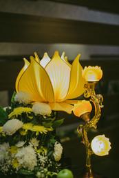 Buddhist Lotus