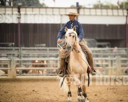 Cowboy Ranch Trail Open-97