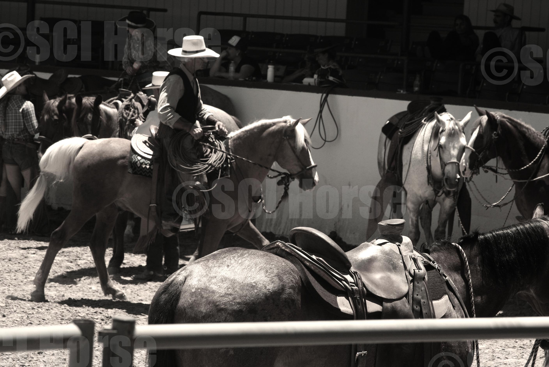 Jeff Ohaco and Santa Cruz Island Horse Cochise - LauraFullilove 2015.jpg