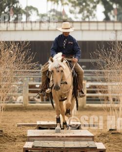 Cowboy Ranch Trail Open-106