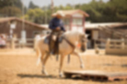 Fiesta_Sat_RanchTrail-Open_Lauren Maeve_