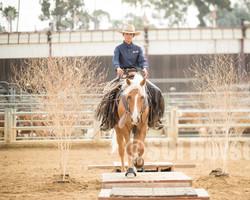 Cowboy Ranch Trail Open-131