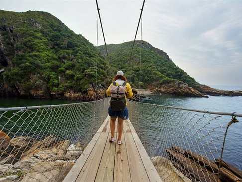 Visit South Africa virtually with Google and SA Tourism's Explorer's Paradise