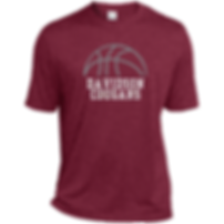 DMS logo basketball.png