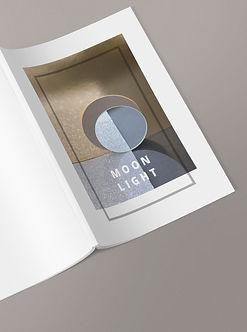 moonlight 4emede couverture.jpg