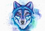 wolf2_edited.jpg