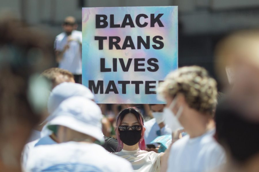 trans lives