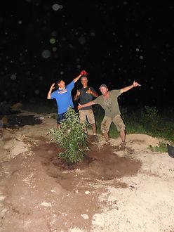 First hemp plant set in KY fields since it's prohibition