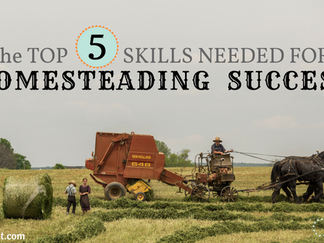 The TOP 5 SKILLS NEEDED FOR HOMESTEADING SUCCESS