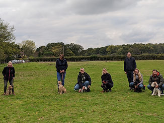 Buttons & Leash Dog Training, Puppy Classes Redhill Surrey, Dog Training Redhill Surrey, Dog Obedience Training Redhill Surrey, Dog Training Near Redhill Surrey, Puppy Trainer Redhill Surrey, Dog Trainer Redhill Surrey, Dog Recall Training Redhill Surrey, Online Puppy Training Redhill Surrey, Puppy Training Redhill Surrey, Puppy Classes Redhill Surrey, Dog Training Redhill Surrey, Dog Obedience Training Redhill Surrey, Dog Training Near Redhill Surrey, Puppy Trainer Redhill Surrey, Dog Recall Training Redhill Surrey, Online Puppy Training Redhill Surrey, Puppy Training Reigate, Puppy Classes Merstham, Dog Training Horley, Dog Obedience Training Gatwick, Dog Training Near Smallfield, Puppy Trainer Nutfield, Dog Trainer Godstone, Dog Recall Training Bletchingley Surrey, Online Puppy Training South Godstone, Puppy Training Oxted, Puppy Classes East Grinstead, Dog Training Crawley, Dog trainer Reigate Surrey, Dog trainer Merstham Surrey, Dog trainer Horley Surrey, Dog trainer Gatwick,