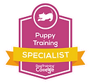 puppy school near me, puppy training, local puppy classes, puppy training near me, 121 dog training, local puppy training classes, puppy app, dog training Oxted, super puppy, dog trainers Oxted, dog training Oxted, dog training in Oxted, positive dog training, local dog training classes, puppy school near me, local dog training, dog trainers in Oxted, puppy training school, positive reinforcement dog training, puppy training classes, surrey dog training, puppyschool, dog obedience classes near me, one to one dog training surrey, dog socialisation, dog trainer near me, puppytraining, dog training cage, dog training classes near me, puppy socialisation classes, Puppy School Oxted, Puppy Training Oxted, Puppy Trainer Oxted