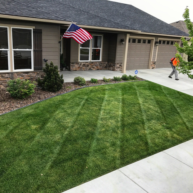 Residential lawn care, Kennewick