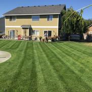 Richland, lawn care