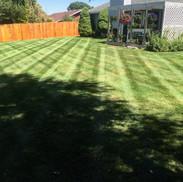 Lawn care, Kennewick WA