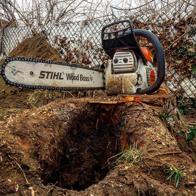 No match for the Stihl! Double tap if #s