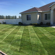 Lawn fertilizer, Richland WA