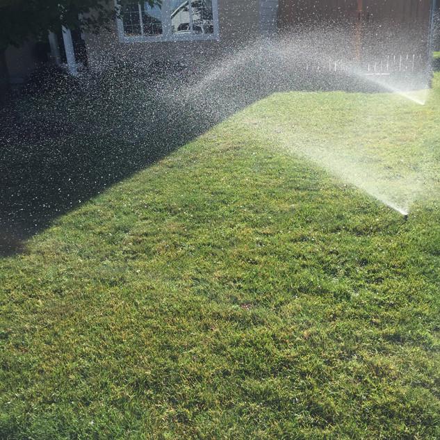 Sprinkler blowout, Richland WA