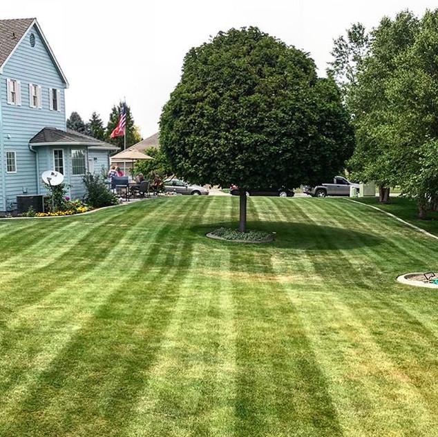 Kennewick lawn care