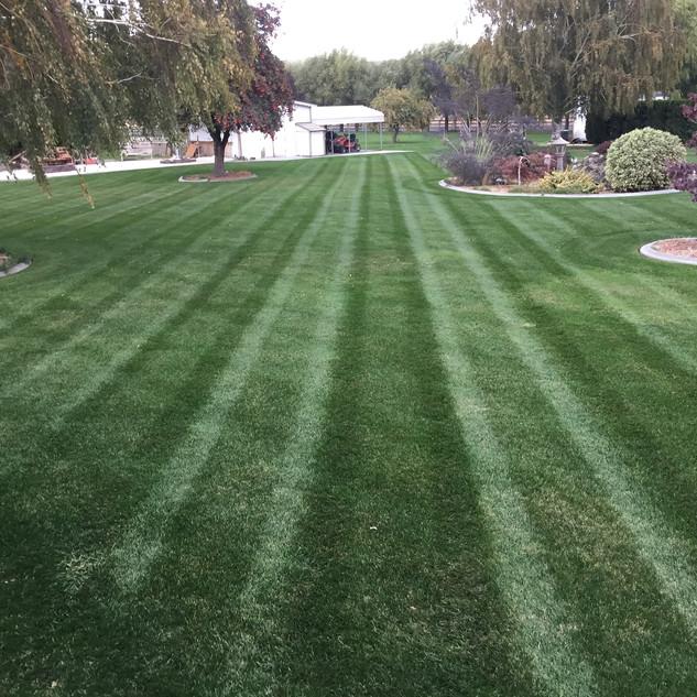 Lawn care, Kennewick