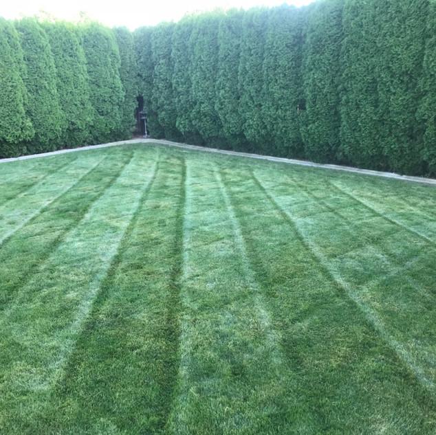 Fertilizer treatments, Richland WA