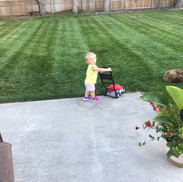 Lawn care, Kennewick WA
