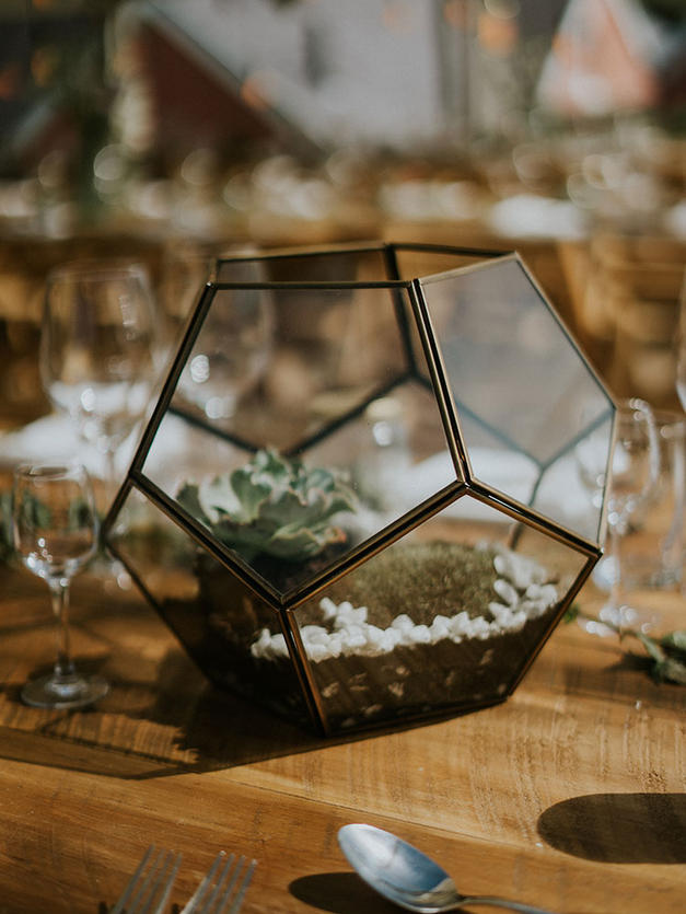 Lizzy + Rhys hired a mix of both terrariums to contain succulents as table and venue decor.