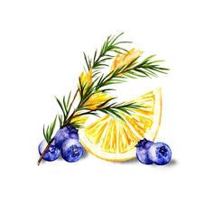 Blueberry Lemon Rooibos