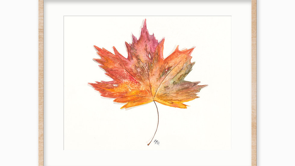 Maple Leaf- Watercolor Print