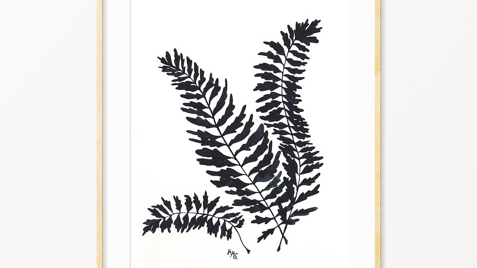 Fern Silhouette- Watercolor Print