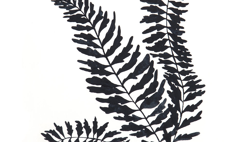 Fern Silhouette- Watercolor Print